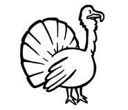 ingredient-turkey.jpg